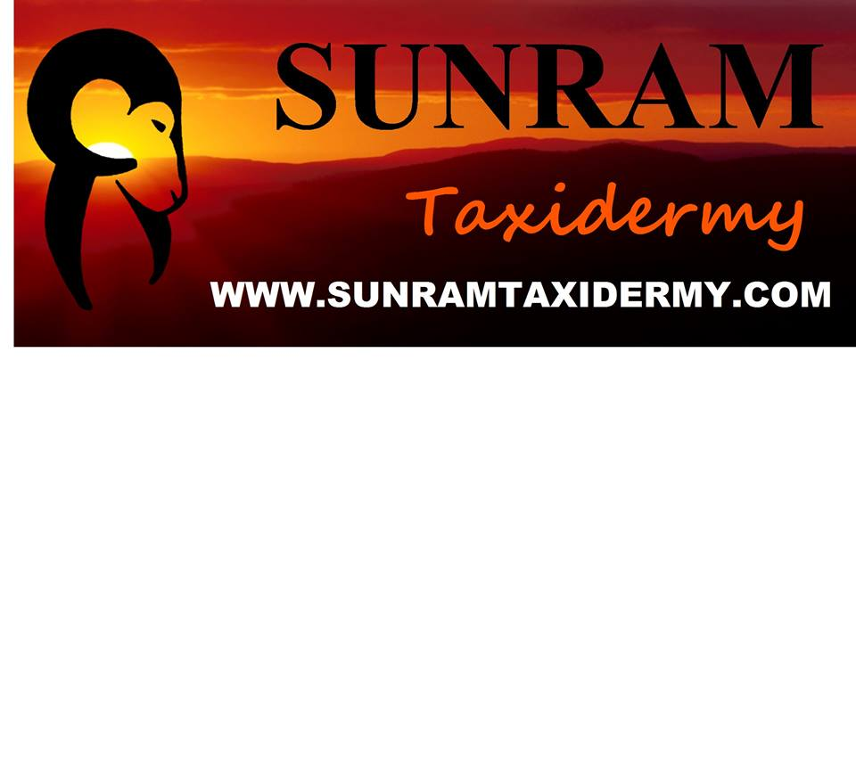 Sunram Taxidermy