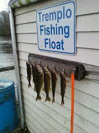 Tremplo Fishing Float