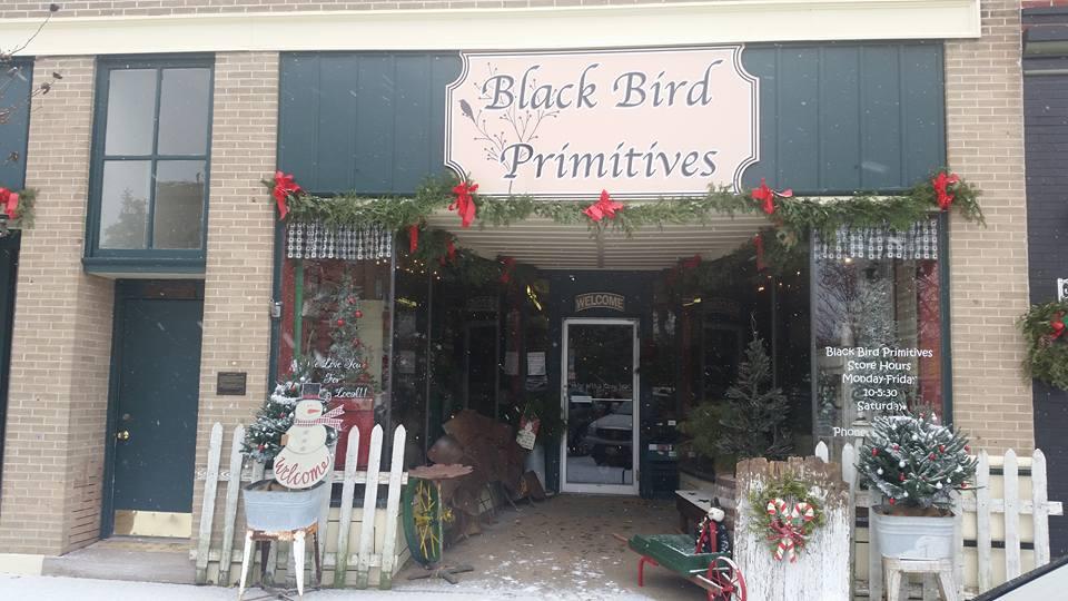 Black Bird Primitives