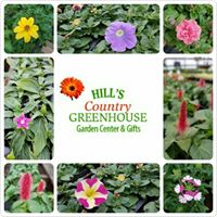 Hill's Country Greenhouse